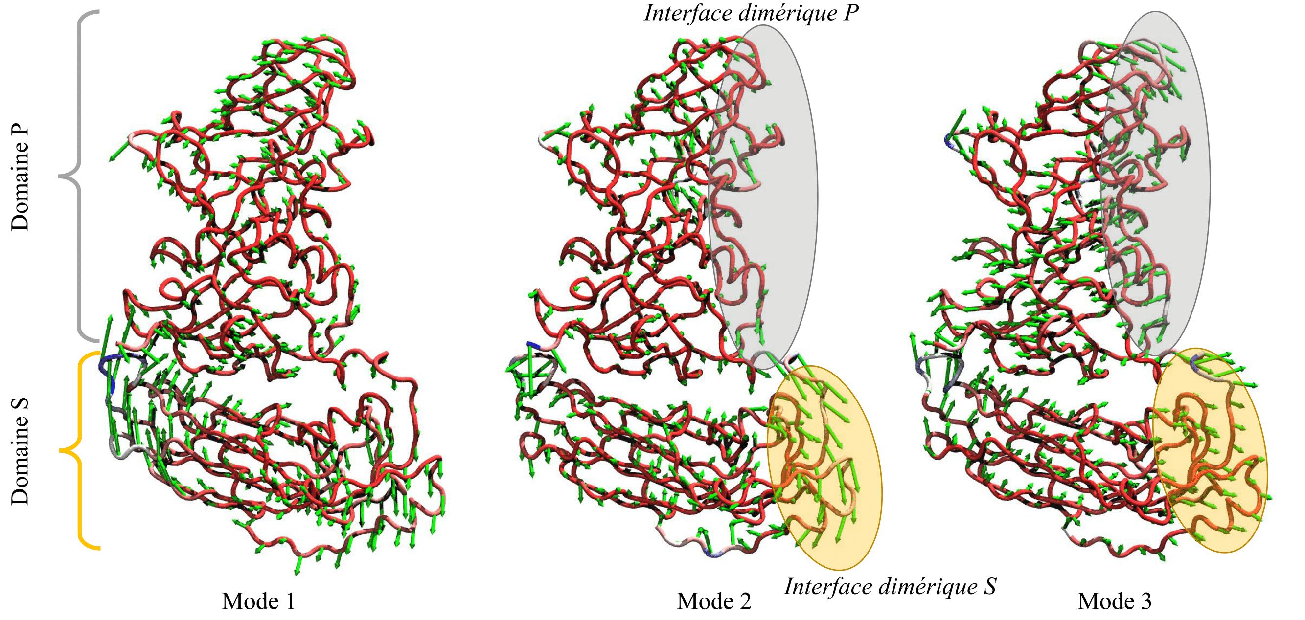 MONO_PCA-1